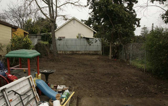 Backyard, no topsoil