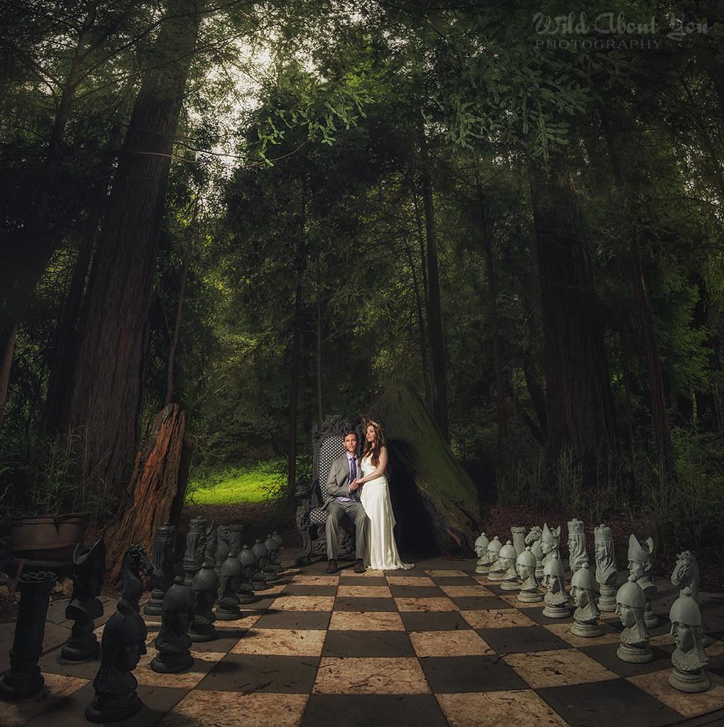 fantasynestldownwedding46
