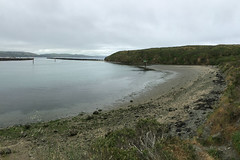 Bodega Bay - Bodega Beach