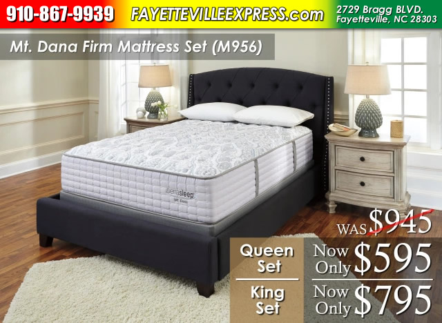 Mt. Dana Firm Mattress Rasta