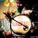 Sunbears 11.23.11-7