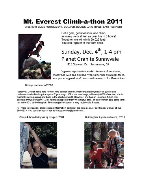 111130 - 2011 FLYER.pdf - stacey collver climbathon