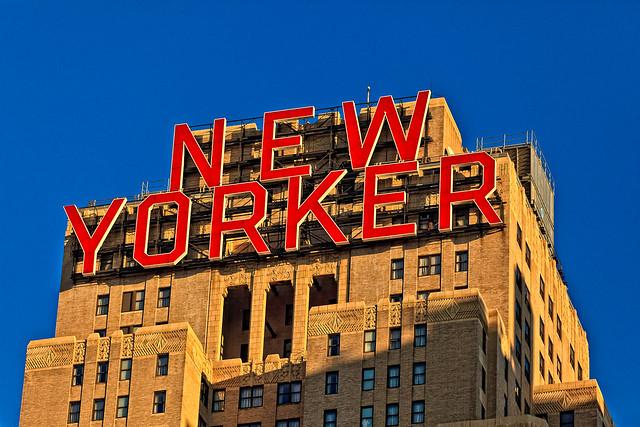323/365 - November 19, 2011 - New Yorker