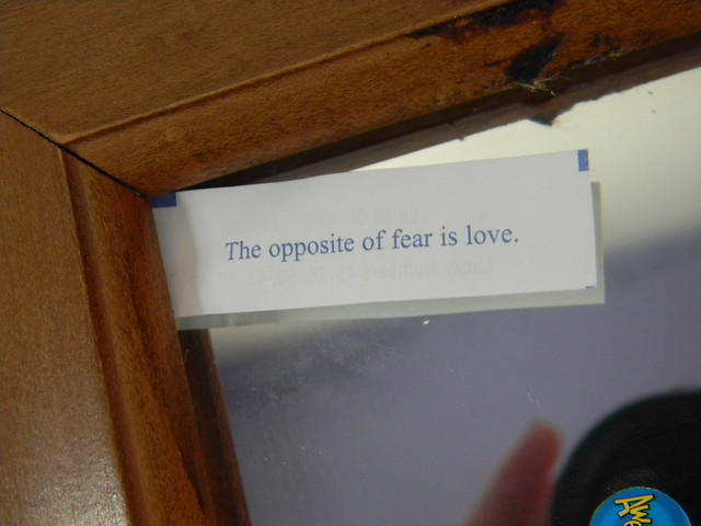 """The Opposite of Fear is Love."""