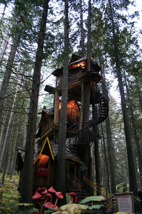 treehouse_012