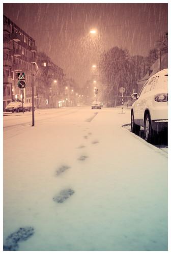 The fall of winter II