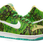 "Nike ""Swamp Thing"" Dunk High"