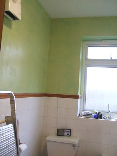 Painting the bathroom