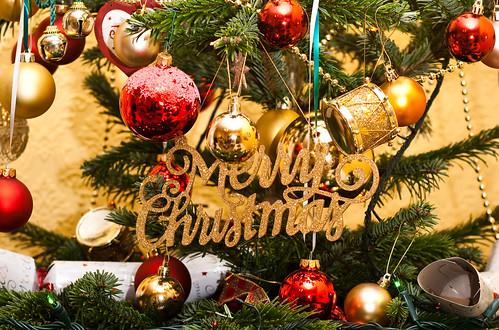 Christmas 2011-1
