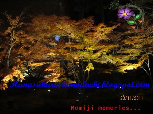 IMG_0144