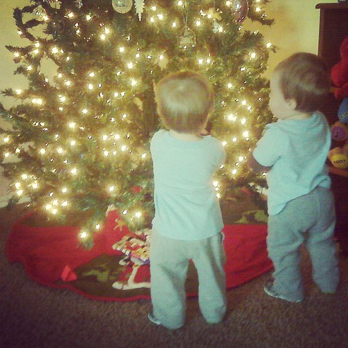 Checking out the Christmas tree...