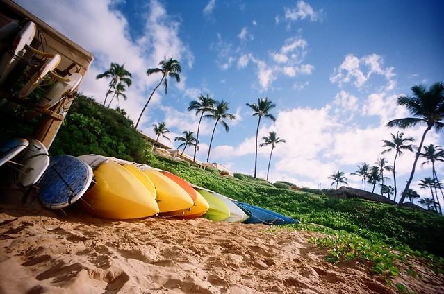 I'm Gay for Maui