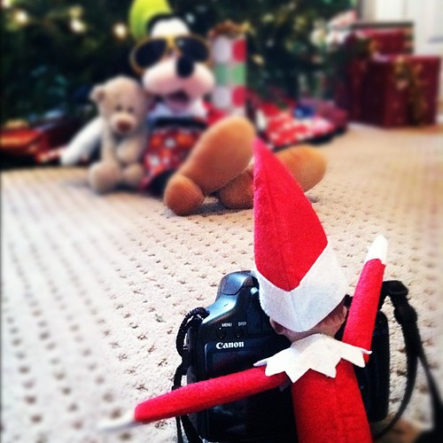 Wonder what Buddy charges for a sitting fee? #elfontheshelf