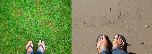 kakiku