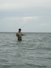 fishing, sea, recreation, casting fishing, outdoor recreation, recreational fishing, surf fishing,