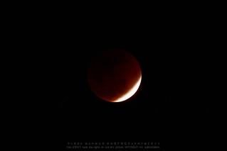 Lunar eclipse...1 December, 2011