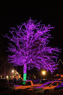 Oregon Zoo Lights