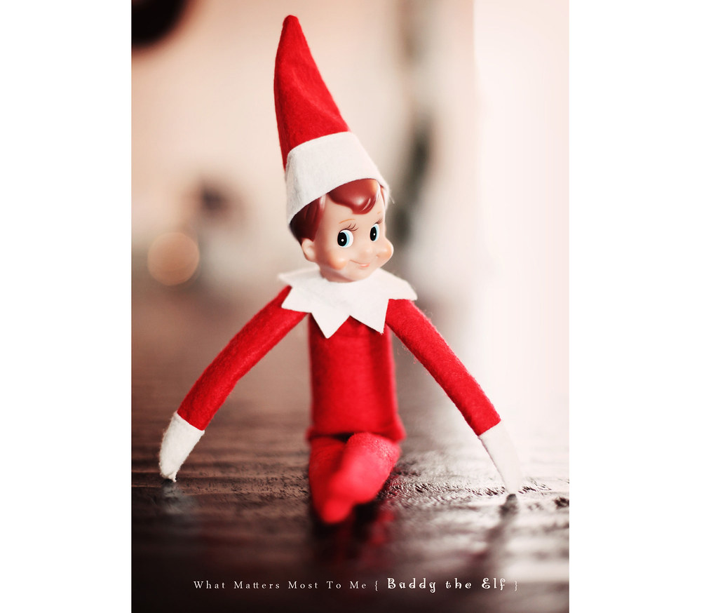 Buddy The Elf 1 blog