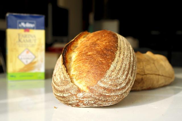 6595760083 8d815afc19 z 2012. La multe paini! cu Apa.Faina.Sare.
