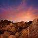 """The Solstice"" Hohokam Indian Petroglyphs by Stephen Oachs (ApertureAcademy.com)"