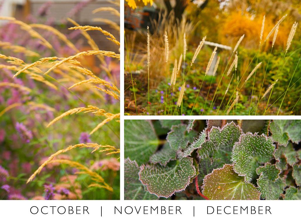 October November December