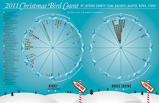 Christmas Bird Count Infographic