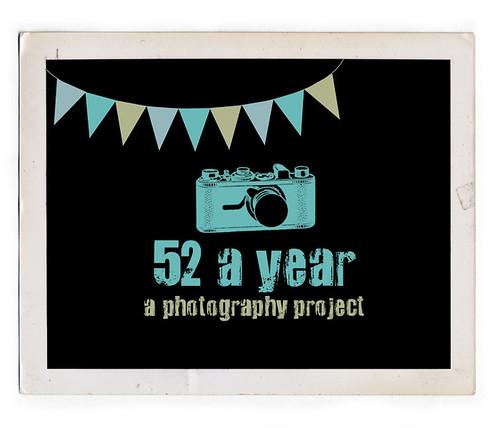52aYear.jpg by tinkerellen
