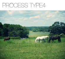 processtype4