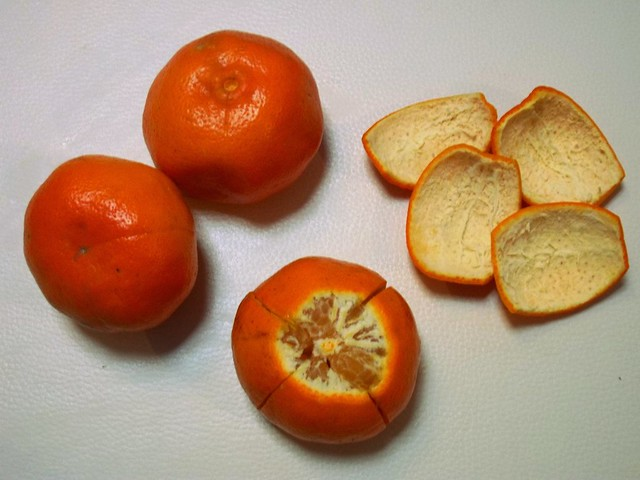 Citrus Peel Prep 1