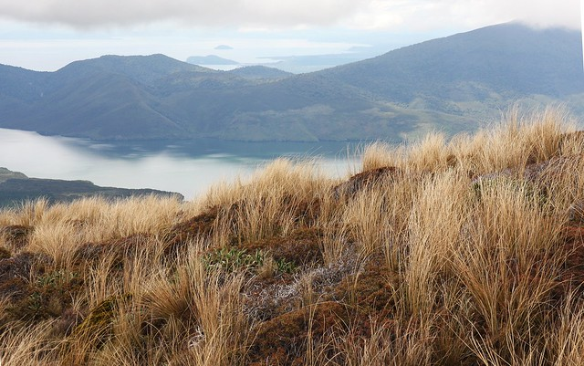 Lake Rotoaira from below Ketetahi Hut