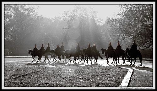 england london sunrise royal sigma queen buckinghampalace britisharmy horseback belgravia 2011 bluesandroyals sonydslr sonya900 michaelallangrant damascusemulsion