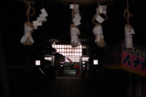 night walker 71