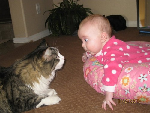 kids and pets.jpg 8