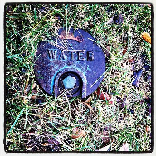 "#janphotoaday Jan 17 ""water"""