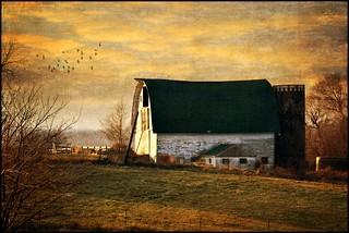 White Barn at Sunset