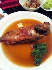 今日のランチはかさごの煮付け。¥800 #lunch