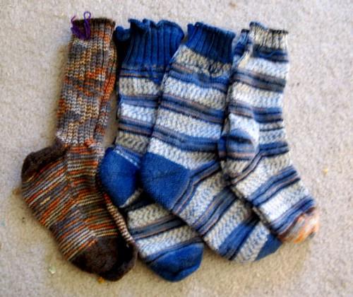 Regia a4a socks