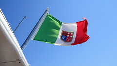 windsports(0.0), flag of the united states(0.0), toy(0.0), wind(1.0), flag(1.0),