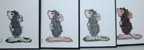 The grey/black-furred mice :)