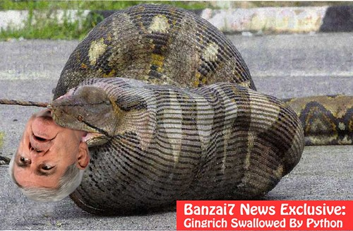 BREAKING: FLORIDA EVERGLADES GINGRICH SWALLOWED BY PYTHON IN BIG DADDY PARKING LOT! by Colonel Flick