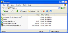 How a Truecrypt Volume Looks in Dropbox