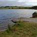 Small photo of Tomarata Lake. Boat ramp.