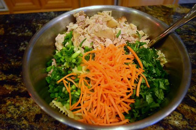 2012-01-03 Asian Pasta Salad 018