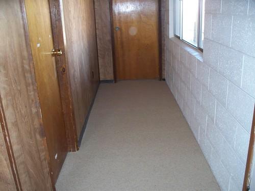 wool carpet 004