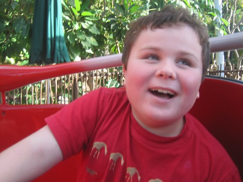 Leo on the LadyBug Twirly Ride at Disneyland's California Adventure