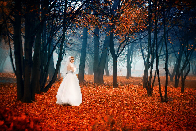 Autumn Wedding Time