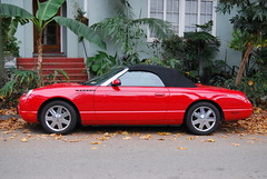 Ford Thunderbird, red, port profile