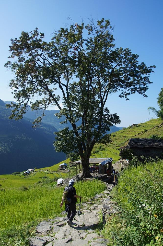 1006_Nepal_072