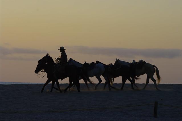 Cabo November 2011 090