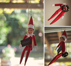 Elf on the Shelf, Day 5 and {339/365}